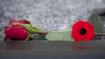 The moment of silence becomes two minutes. A commemorative day becomes a week. As more veterans die and more soldiers' bodies return, Canadians have a growing interest in Remembrance Day
