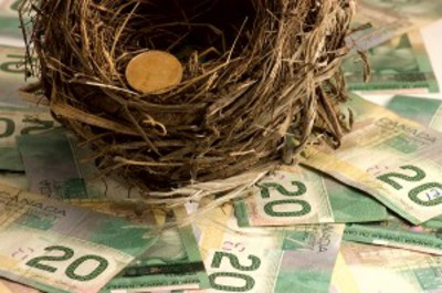 Nest egg. The Brampton-Mississauga and District Labour Council (BMDLC), in collaboration with the Canadian Labour Congress and other community groups, will gather at the Leo Gerrard Union Hall, 1158 Aerowood Dr. At the meeting, participants will discuss what they see as the collapse of Canada's social safety net. Photo courtesy of Canadian Finance Blog