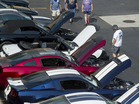 Mustang Alley on Nine Mile in Ferndale was the home to dozens of Ford Mustangs from across the vehicle's history.
